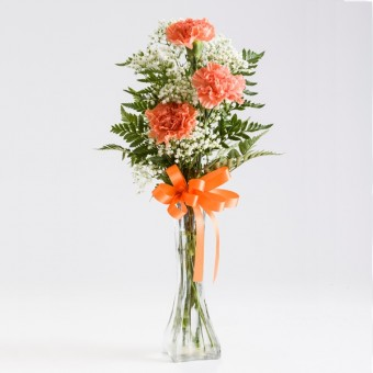 3 Stem Carnation Bud Vase