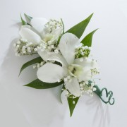 Two Dendrobium Orchid Boutonniere